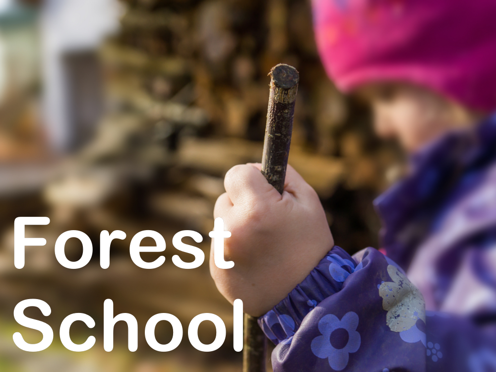 Forest School for schools in Bath and Wiltshire