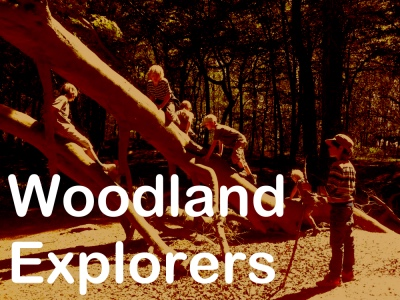 nature woodland explorers school trips near bath and westonbirt arboretum
